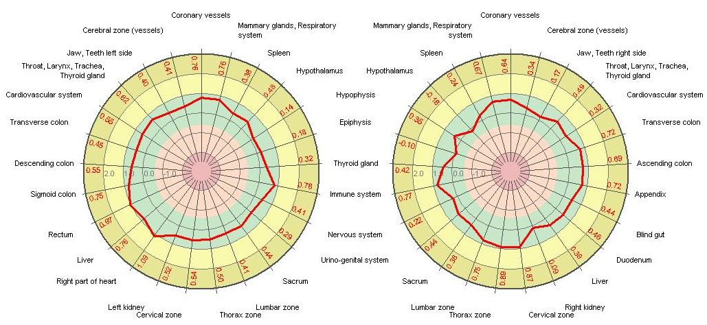 Colour Vibrations - Kirlian diagnostic diagram